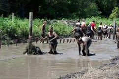 在泥的小组 免版税库存图片