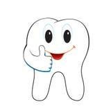 Зуб Стоковая Фотография RF