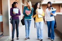 Гулять студентов колледжа Стоковое Изображение RF