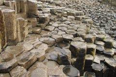 巨人的堤道柱状玄武岩 免版税库存照片