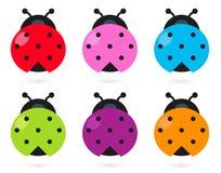 逗人喜爱的五颜六色的瓢虫集 免版税库存照片