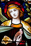 Ангел цветного стекла Стоковое Изображение