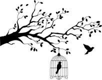与鸟飞行的结构树剪影 库存照片