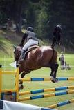 显示跳的马和车手 库存图片