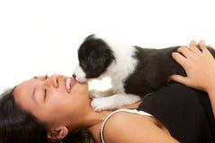 Поцелуи щенка Стоковое Изображение RF