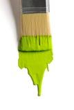 与绿色油漆的画笔 免版税库存图片