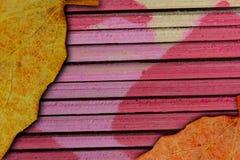 Ξηρό φύλλο Στοκ εικόνα με δικαίωμα ελεύθερης χρήσης