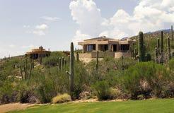 亚利桑那高尔夫球场风景横向和家 免版税库存图片