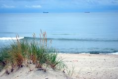 波罗的海岸,沙丘,沙子海滩,蓝天 免版税库存照片