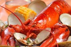 与蛤蜊和玉米的煮沸的龙虾正餐 库存图片