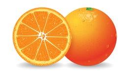 橙色向量 库存图片