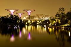 由海湾新加坡的庭院 库存照片