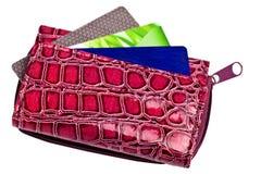 Пурпуровый бумажник с карточками Стоковое Изображение