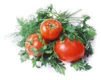 Ντομάτες και κήπος-ουσία που απομονώνονται στο λευκό Στοκ φωτογραφίες με δικαίωμα ελεύθερης χρήσης