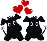 在爱的二条逗人喜爱的狗 免版税库存照片