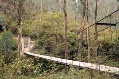 被暂停的桥梁 库存照片