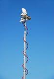 телекоммуникации черни антенны Стоковое Фото