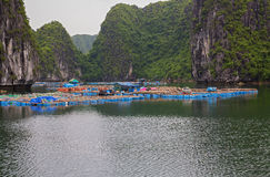 浮动的渔村 库存图片