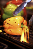 зажженные перцы Стоковая Фотография