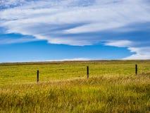 大草原横向 库存照片