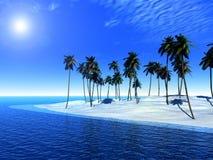 棕榈树海岛 库存图片