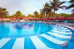 在早晨的热带游泳池 库存照片