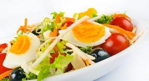 Φυτική σαλάτα Στοκ εικόνες με δικαίωμα ελεύθερης χρήσης