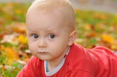 婴孩在秋天 免版税库存图片