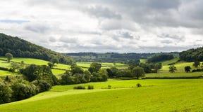威尔士乡下全景  库存图片