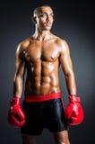 有红色手套的拳击手在黑暗 免版税库存照片