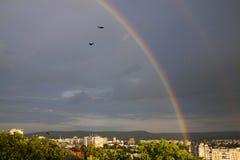 彩虹,在雨以后的惊人的视图 免版税库存照片