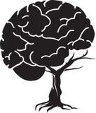 脑子结构树 图库摄影