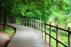 木路径和扶手栏杆 库存照片