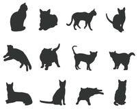 Τα σύνολα γατών σκιαγραφιών, δημιουργούν από το διάνυσμα Στοκ Φωτογραφίες