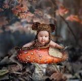 童话在秋天森林里 免版税库存照片