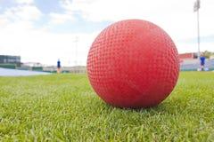 Красный шарик на поле Стоковые Изображения