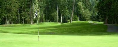 高尔夫球绿色 免版税库存照片