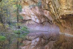 Западное листво падения вилки Стоковая Фотография RF