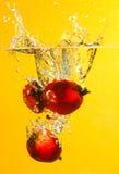 油棕榈树果子飞溅 免版税库存图片