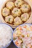亚洲食物的分类 免版税图库摄影