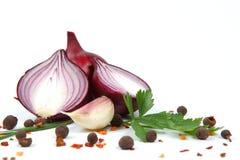 红洋葱用查出的大蒜和香料 库存图片