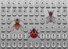 Προγραμματιστικά λάθη λογισμικού Στοκ φωτογραφία με δικαίωμα ελεύθερης χρήσης
