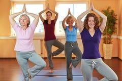 在瑜伽选件类的组在健身俱乐部 库存照片