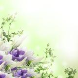 从空白和桃红色花的花束 免版税库存照片