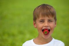 小男孩吃一个草莓 免版税库存照片