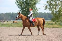 美丽的幼小白肤金发的妇女骑马栗子马 库存图片