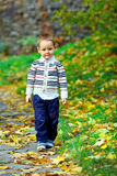 走在秋天公园的逗人喜爱的小男孩 库存照片