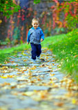 运行在秋天公园的小男婴 图库摄影