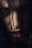 性感的巫婆 免版税库存图片