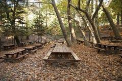 橡木森林野餐站点 免版税库存图片